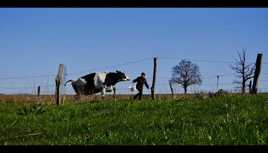 Les vaches n'auront plus de nom, un film de Hubert Charuel (France ...